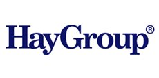 Hay Consulting, London Business School, Senior mentoring